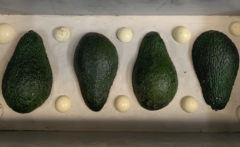 Custom made avocado moulds